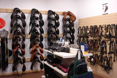 4cd642c5edf Woolcroft Equine Services Ltd - Saddle fitting, Rider training and ...